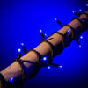 blauwe kerstverlichting