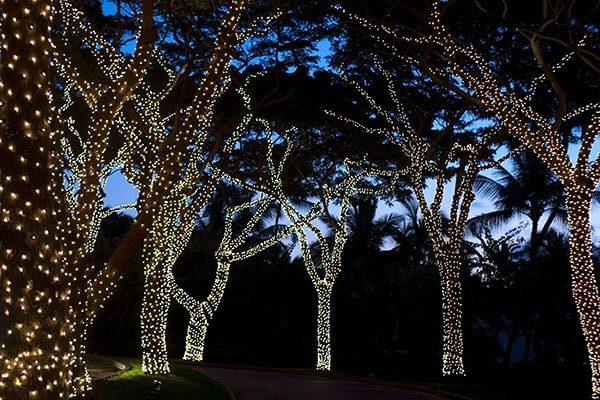 let wel op dat je in het geval van permanente bevestiging de lichtsnoeren niet te strak rondom de stam en takken van de boom wikkelt anders komt er teveel