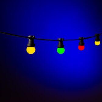 carnaval lampjes