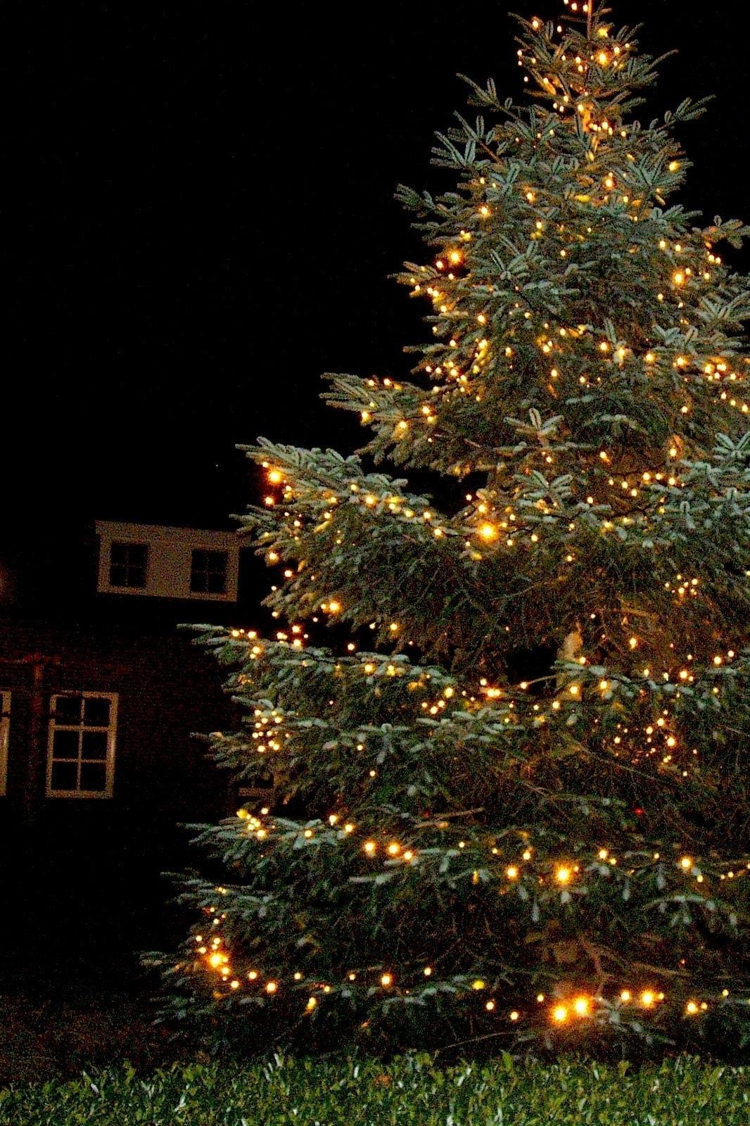 grote kerstboom verlichting