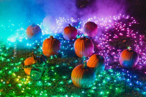 halloween lampjes