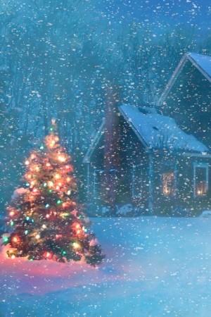 kerstboom buiten versieren