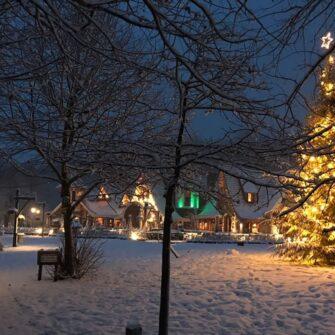 kerstboomverlichting grote boom