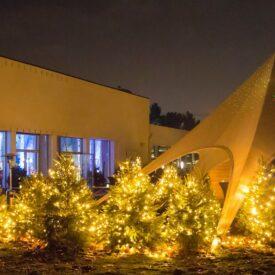 kerstboomverlichting koppelbaar
