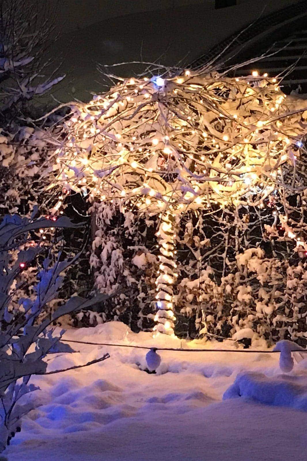 kerstverlichting koppelbaar boomverlichting
