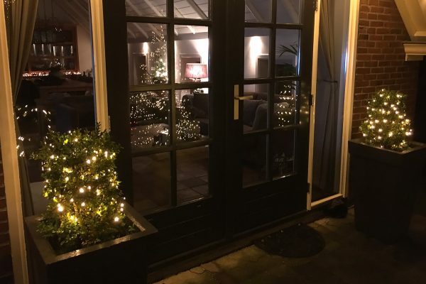 kerstverlichting led buxus