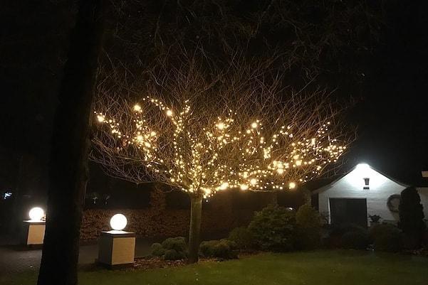 kerstverlichting voor boom buiten