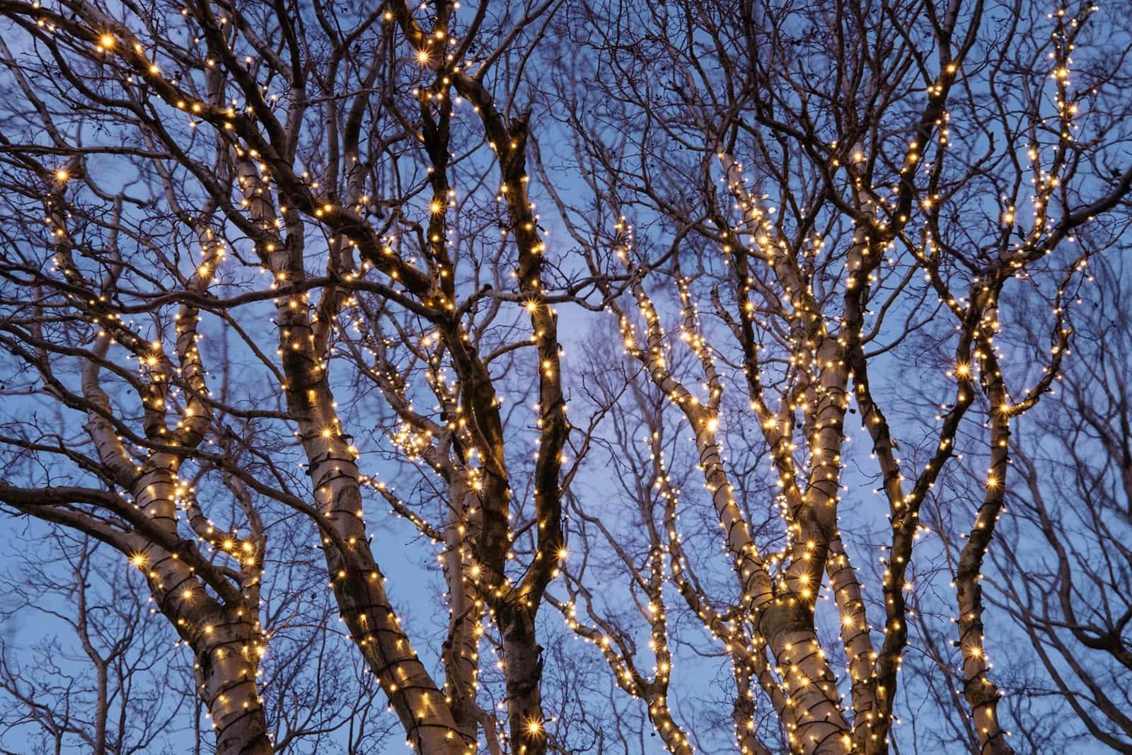 Koppelbare Kerstverlichting Led Warm Wit Starterset