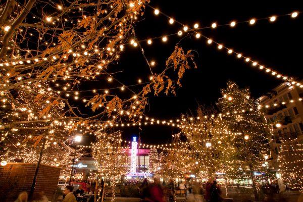 Party Verlichting Tuin : Feestverlichting kopen prikkabel led lampen online shop